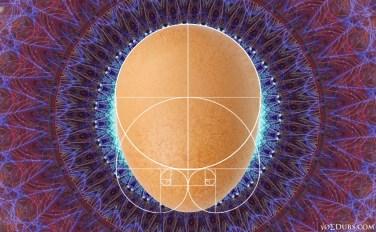 Fibonacci Egg