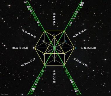 Prime Vector Equilibrium