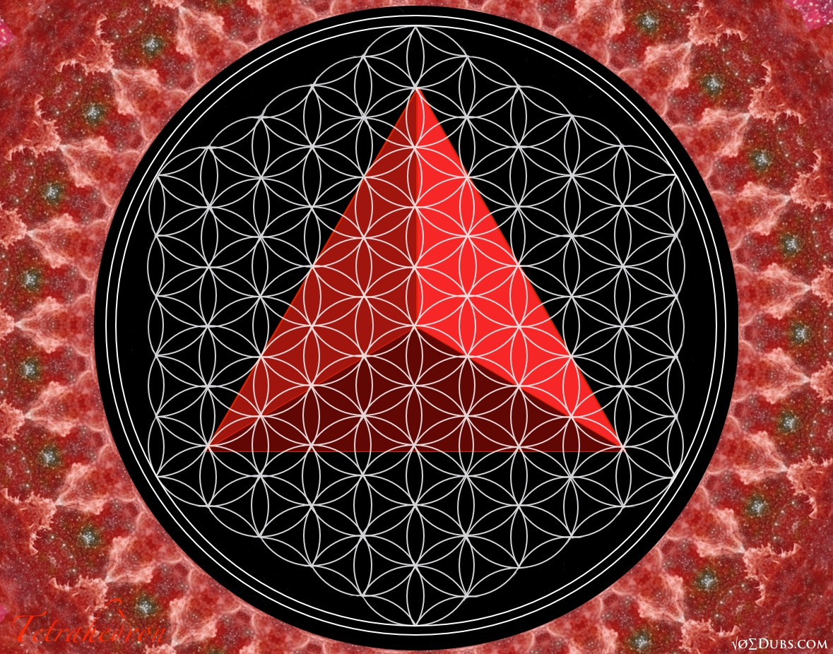 Tetrahedron Flower of Life