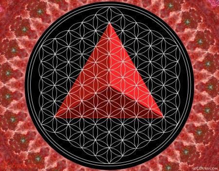 Tetrahedron Flower of Life