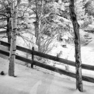 Shooting Infrared in the Winter