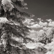 It's Not Snow: Photographing Arvada, CO in Infrared