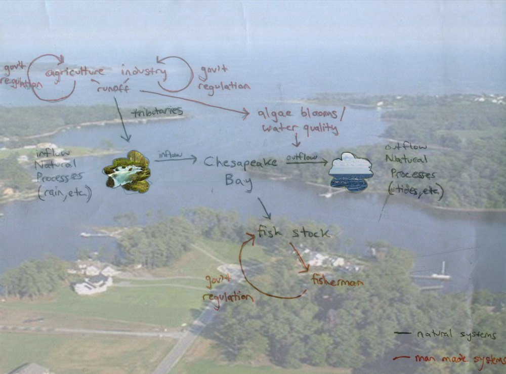 medium resolution of describe how your diagram and understanding have changed since your first diagram of the chesapeake bay watershed system