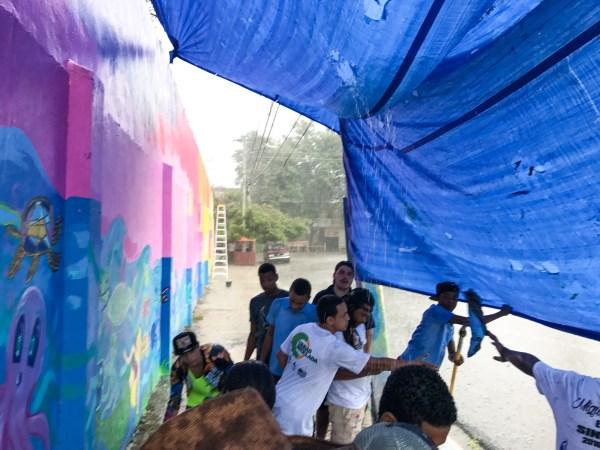 Art & Sustainability In Dominican Republic Joel Artista