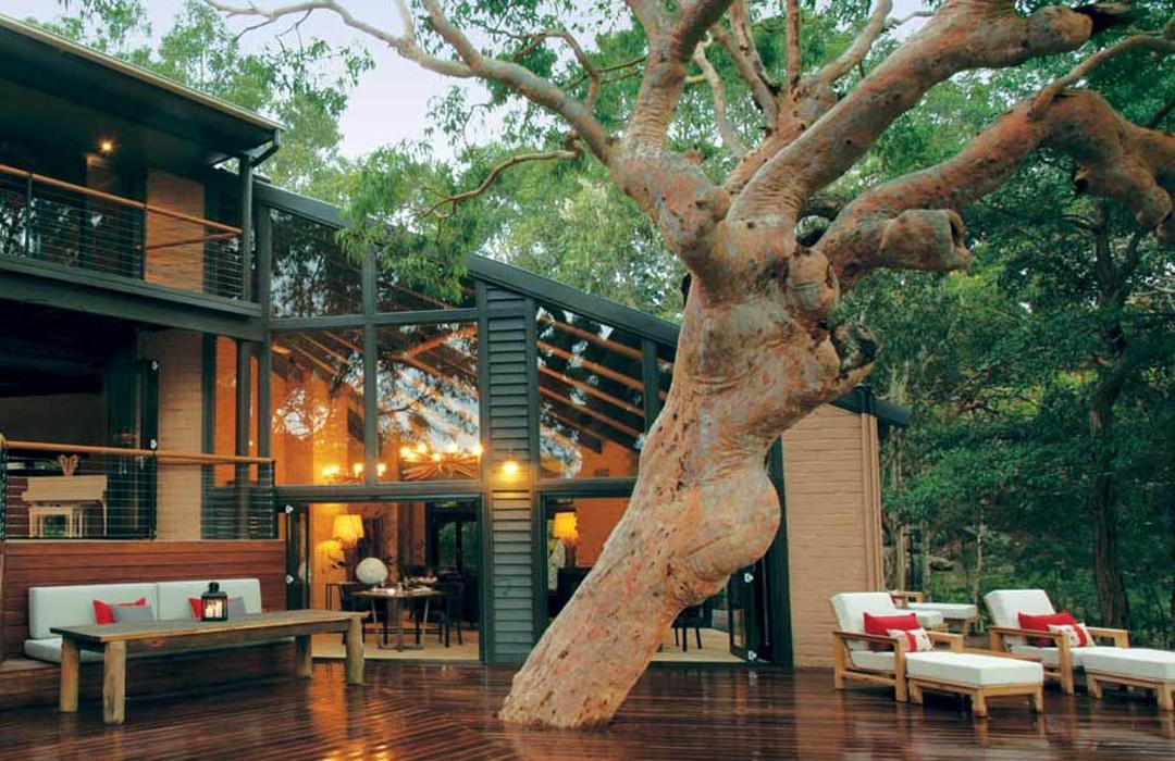 sydney-beach-hosue-tree-deck
