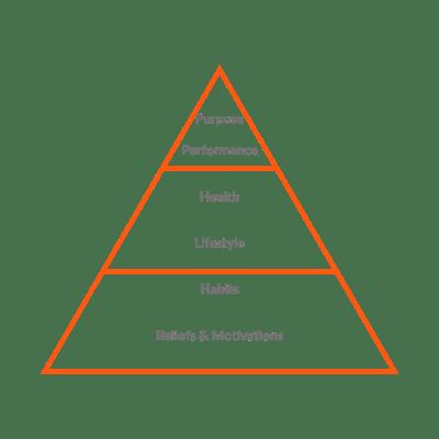 infographic-health-pyramid