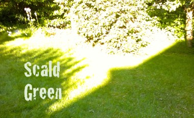 Scald Green