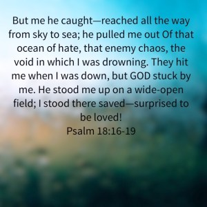 He brought me into a spacious place.