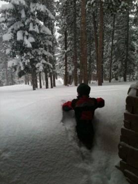 Little boy...big snow