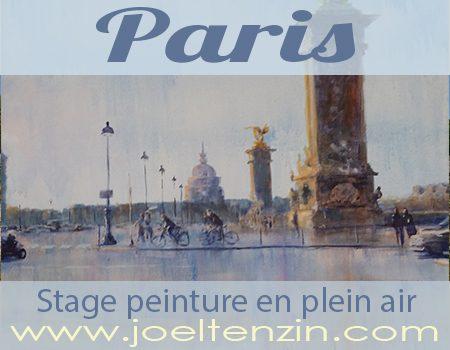 Stage peinture plein air à Paris avec joel Tenzin