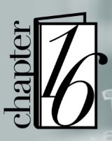 chapter16logo