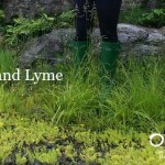 Lyme, Lyme, Lyme:  Just Making Sure You Know What to Do
