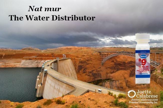 Cell Salt Series: Nat mur, The Water Distributor
