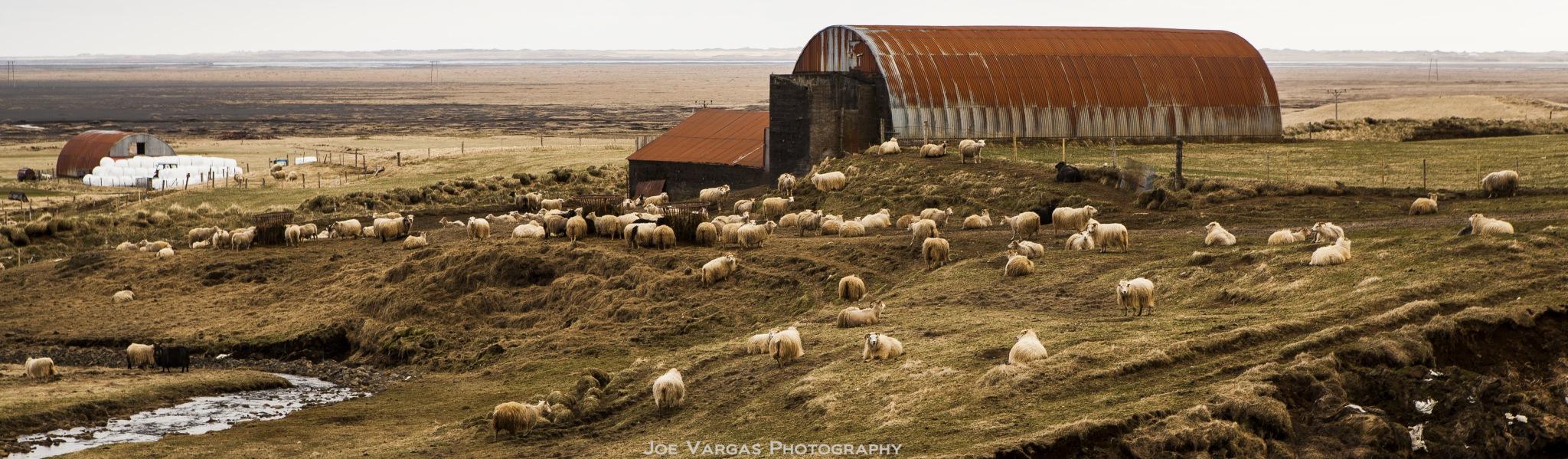 Iceland_2016-04-24-238L