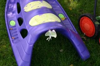 A2-Luna Moths