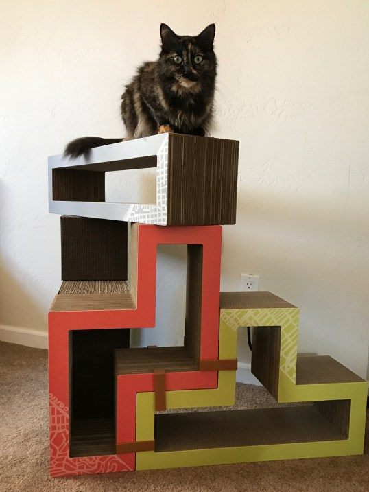 Cali sits on Katris Blocks
