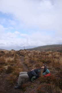 A short break in the tussock with welcome patches of blue sky.