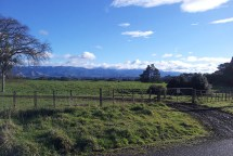 Beautiful scenery in rural NZ with snow on the Ruahines. [Photo © Johann van der Merwe]