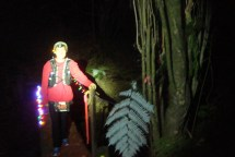 Over the final 5+ kms, many sections of the route were lit up with colourful fairy lights, turning our late night run into a forest fairytale. This picture doesn't do it justice at all, but it was a really special experience.
