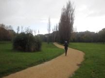 A nice little loop through Waitoetoe Park.