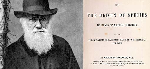 The Origin of Species, Darwin Racist