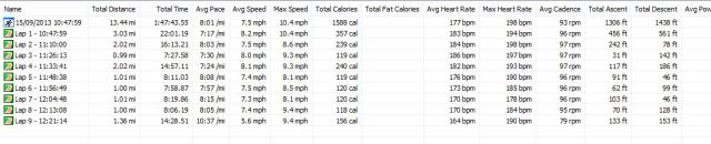 Missing Great North Run Running Statistics 15-09-2013 Run 04