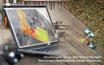Keuntungan Besar dari Drone dengan Pencitraan Multispektral Dalam Pertanian