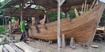 Beberapa Jenis Kayu Di Indonesia Dan Kegunaannya