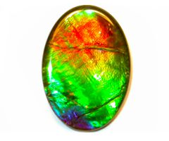 Image result for ammolite