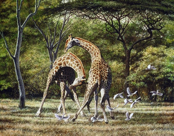 Giraffe Johan Hoekstra Wildlife Art Collection