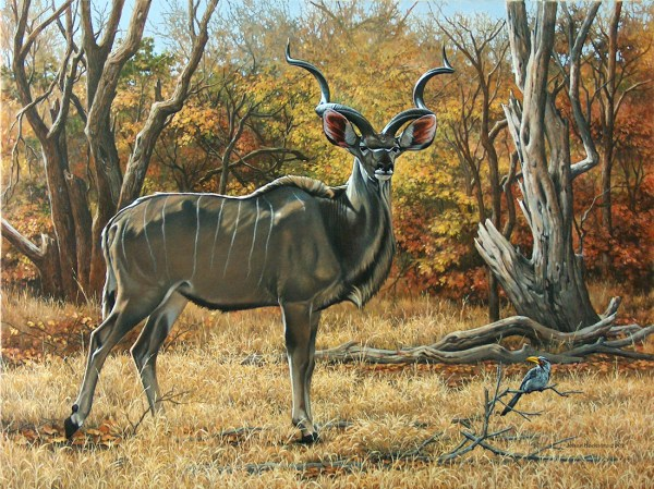 Johan Hoekstra Wildlife Art