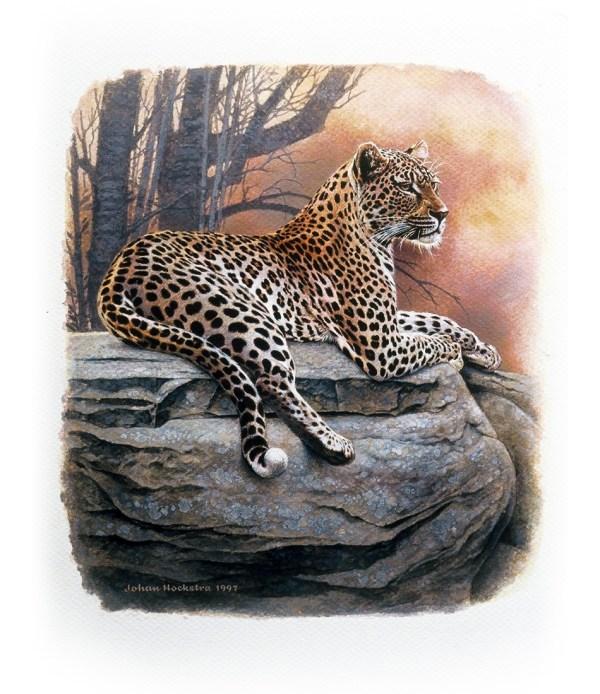 Johan Hoekstra Wildlife Art