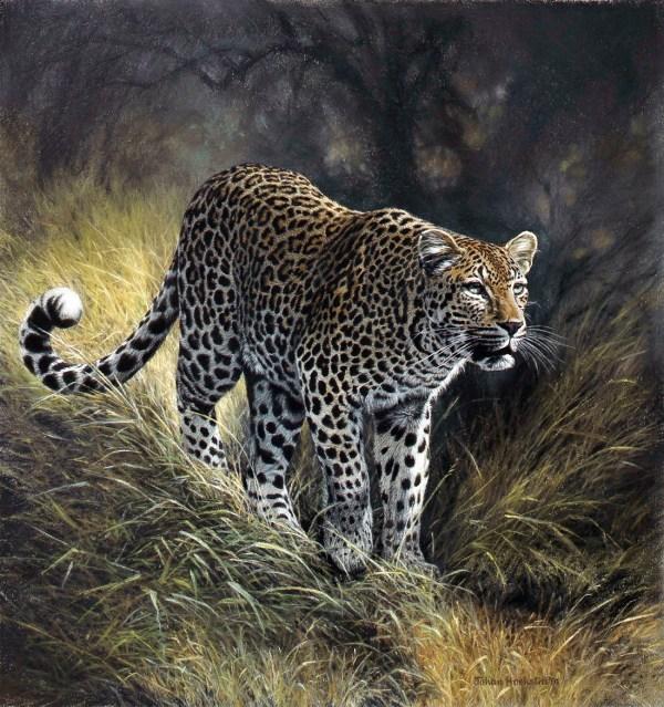 Johan Hoekstra Wildlife Art - Prints Fine