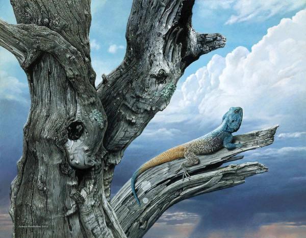 Johan Hoekstra Wildlife Art Paintings