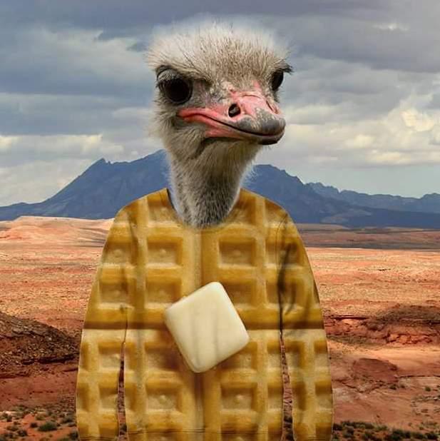 Waffled ostrich