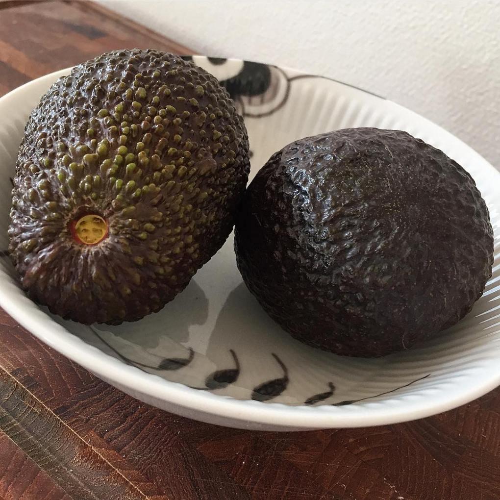 perfectly ripe avocados