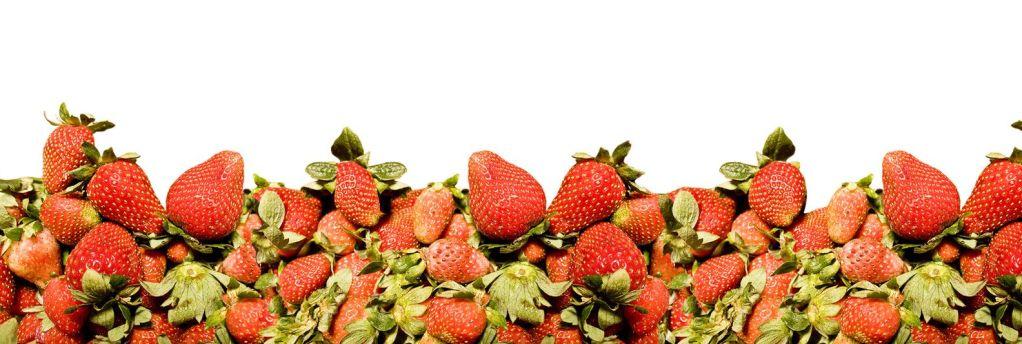 strawberry-border-1241800-1599x1066