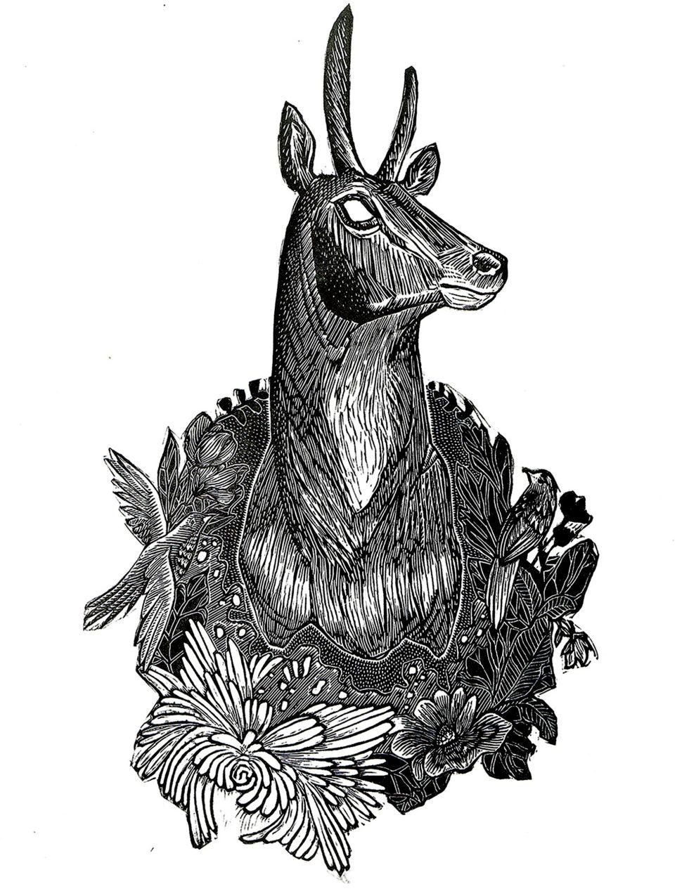 Trophy II Antelope Print Edition by Johanna Mueller