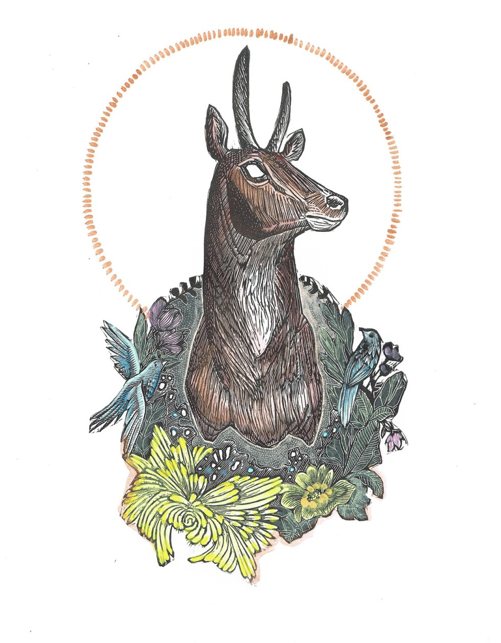 Trophy II Antelope Hand Colored Edition by Johanna Mueller
