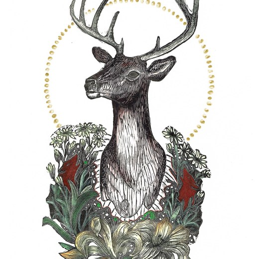 Trophy I Stag Hand Colored Edition by Johanna Mueller