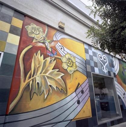 Civic Center Mural taj flower