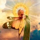 Johanna wings by River Ananda