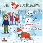 Cover Fuchsbande CD 13