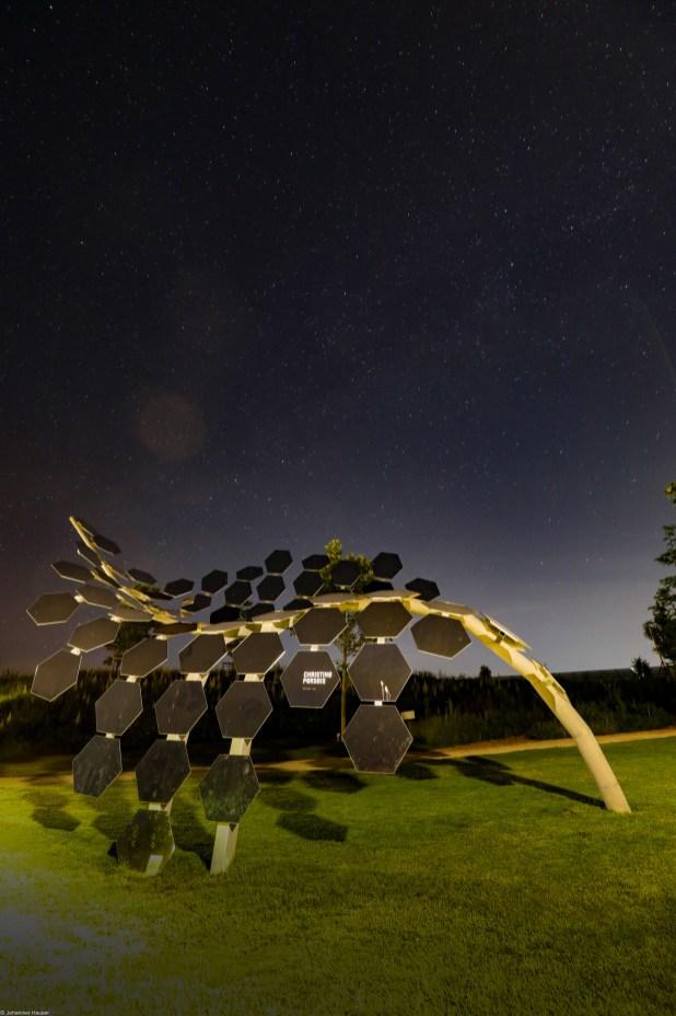 Landesgartenschau bei Nacht-22