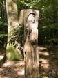 gesehen auf dem Pfad der Baumgiganten oberhalb Bad Kissingens