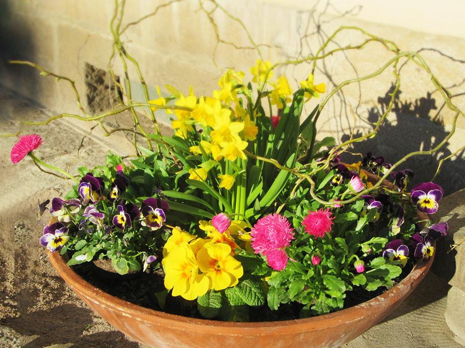 Frühjahrsbepflanzung auf unseren Friedhöfen