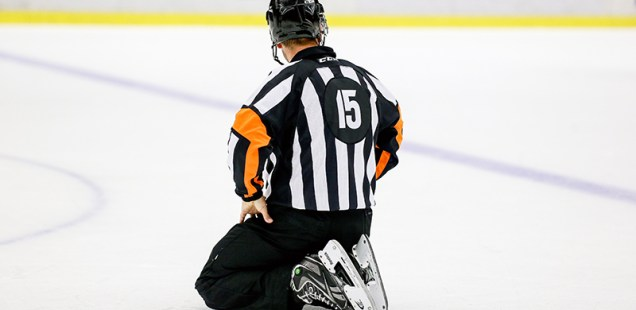 Vi har kanske världens bästa hockeydomare. Ändå jagas dom.
