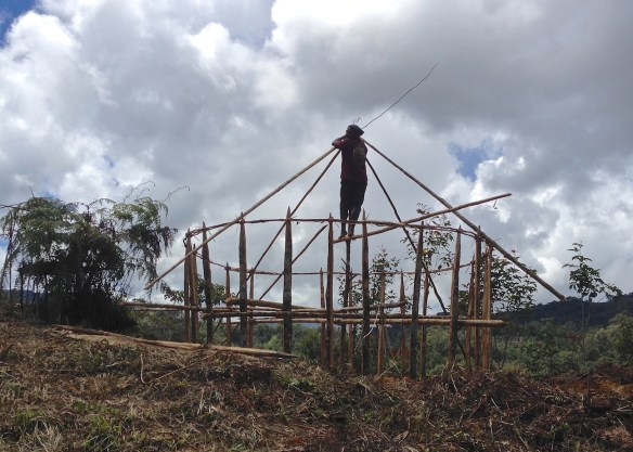 Betwel builds a new house under a quickly-clouding sky. (Nov. 2015)