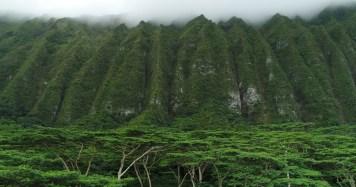 drone photo-Oahu-Foggy Mountain Cliffs