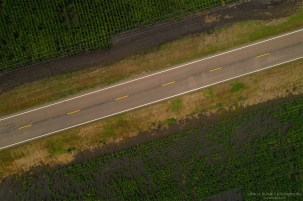 Drone-Corn_Road-1